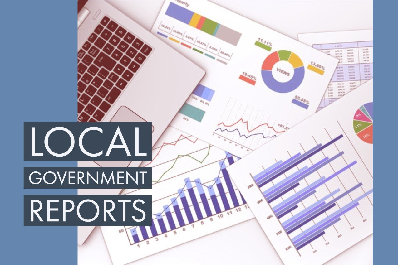Local Government Reports Image